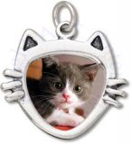 Kitty Cat Face Head Picture Frame Charm