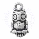Mini Owl With Large Eyes Sitting On Branch Charm