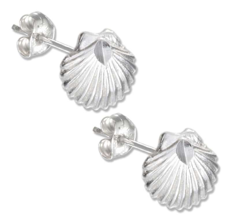 Scallop Shell Post Earrings